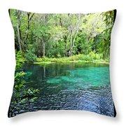 Ichetucknee Blue Hole Spring Throw Pillow