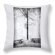 Icing On The Lake Throw Pillow