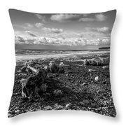 Icy Alaskan Beach Throw Pillow