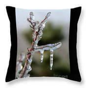 Icy Branch-7529 Throw Pillow