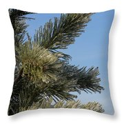 Icy Branch-7673 Throw Pillow
