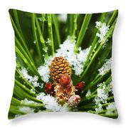Icy Pine 1 Throw Pillow