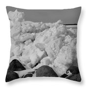 Icy Shoreline In Black And White Throw Pillow