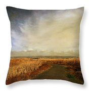 If I Could See Into The Future Throw Pillow