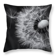If Only Wishes Came True Throw Pillow