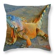 Iguana At The Restaurant  Throw Pillow