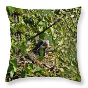 Iguana Hiding In The Bushes Throw Pillow