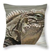 Iguana Two Throw Pillow