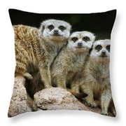 I'll Stand By You Throw Pillow