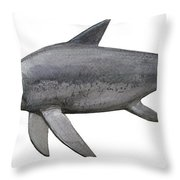Illustration Of An Eurhinosaurus Throw Pillow by Sergey Krasovskiy