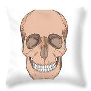 Illustration Of Anterior Skull Throw Pillow