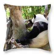 I'm Not Talking To You Throw Pillow