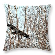 Immature Bald Eagle Flying Throw Pillow
