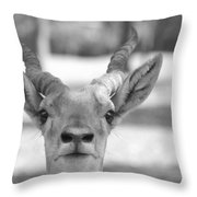 Impala -black And White Throw Pillow