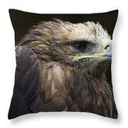 Imperial Eagle 4 Throw Pillow