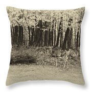 In A Yellow Wood Antique Throw Pillow