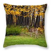 In A Yellow Wood Painted Throw Pillow