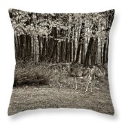 In A Yellow Wood Sepia Throw Pillow