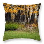 In A Yellow Wood Throw Pillow