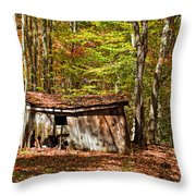 In Autumn Woods Throw Pillow by Steve Harrington