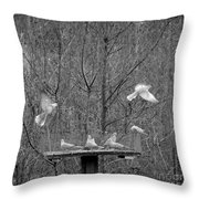In Coming Taking Off Throw Pillow