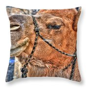 In Deep Thought Throw Pillow