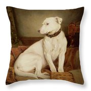 In Disgrace Throw Pillow by William Woodhouse
