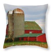 In Farmer's Field Throw Pillow