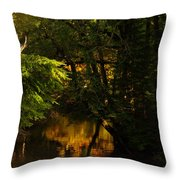 In Golden Moments Of Reflection Throw Pillow