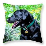 In His Element Throw Pillow