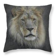 In Memory Of Elson Throw Pillow by Ernie Echols