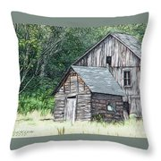 In Need Of Tlc Throw Pillow