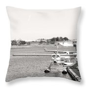 In Plane Sight Throw Pillow