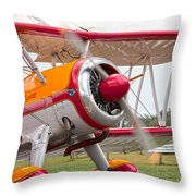 In Plane View Throw Pillow