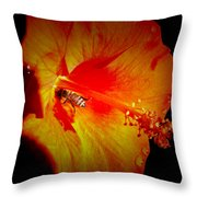 In Search Of Sweet Rewards Throw Pillow