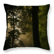 In Soft Shades Of Paradise Throw Pillow