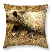 In Stride Throw Pillow