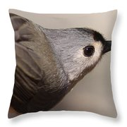 In Style Throw Pillow
