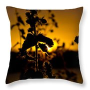 In Sunset's Glow Throw Pillow