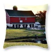 In The Barn Yard Throw Pillow