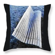 In The Cold Light Of Dawn  Throw Pillow