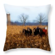 In The Corn 1 Throw Pillow