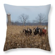 In The Corn 2 Throw Pillow