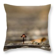 In The Cracks Of The Tracks Throw Pillow