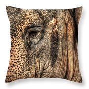 In The Eye Of The Beholder  Throw Pillow