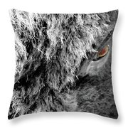 In The Eye Of The Buffaloe  Throw Pillow