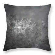 In The Garden Of The Snowflakes Throw Pillow