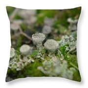 In The Land Of Little Mushrooms  Throw Pillow