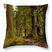 In The Land Of The Giants  Throw Pillow