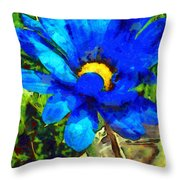 In The Light Revisited Throw Pillow